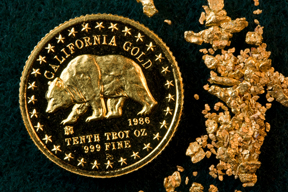 CALIFORNIA GOLD COIN - Grizzly Bear